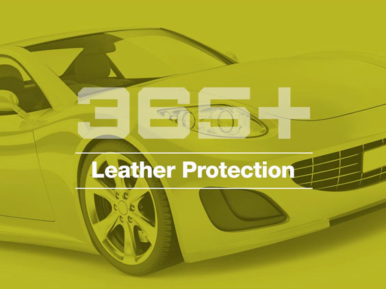 365+ leather protection image