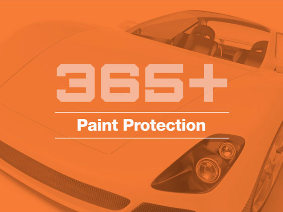 365+paint-protection_image-365+orange_564x423